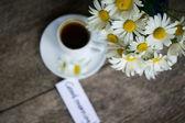 Daisy and coffee — Stock Photo