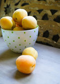 Apricots in the bucket — Stock Photo