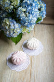 Zephyr sweets and Hydrangea — Stock Photo