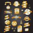Christmas gold vintage labels, elements and illustrations — Stock Vector #14068089