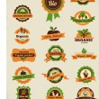 Stock Vector: Organic food labels, tags and graphic elements