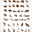 Vector collection of animal icons — Imagen vectorial