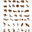 Stock Vector: Vector collection of animal icons
