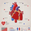 Human Heart health, disease and attack infographic — Stock Vector #27049271