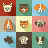 Pets vector icons - cats and dogs elements — Stock Photo