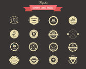 Hipster lables, badges and elements — Stock Vector
