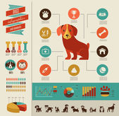 Dogs infographic and icon set — Stock Vector