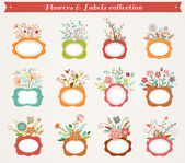 Flowers with frames - vector illustrations collection — Stock Vector