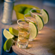 Tequila shots — Stock Photo #40476019