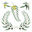 Stock Vector: Olive branches