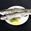 Trout — Stock Photo