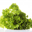 Parsley — Stock Photo #21335239