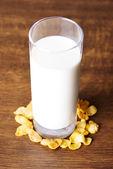 Glass of milk — Stock Photo