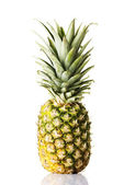Pineapple — Stock Photo