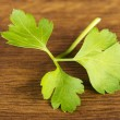 Green parsley — Stock Photo