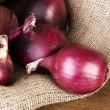 Red onion — Stock Photo #22016681
