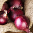 Red onion — Stock Photo #22016689
