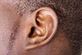 Ucho zblízka — Stock fotografie