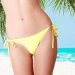 Sexy belly of fit woman in bikini. — Stock Photo #26815331