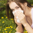 Young womwith allergy — Stock Photo #26815703