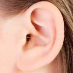 genç bir beyaz kadın kulak portre — Stok fotoğraf