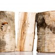 Cut log fire wood from birch-tree. — Stock Photo