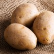 Potatoes — Stock Photo #33408763