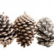 Stock Photo: Three cones over white.