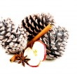 Three cones of a tree with cinnamon and spple slice. — Stock Photo #36001915