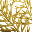 Picture of a gold separate twig, close up. — Stock Photo