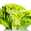 Fresh, green lettuce over white. — Stock Photo