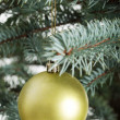 Christmas ball hanging on a tree. — Stock Photo