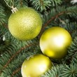 Three christmas balls hanging on christmas tree. — Stok fotoğraf