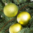Three christmas balls hanging on christmas tree. — Stock Photo #36005383