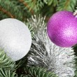 Stock Photo: Two chriustmas balls hangind on a tree.