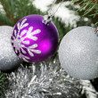 Three christmas balls hanging on christmas tree. — Zdjęcie stockowe