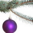 Stock Photo: One separate christmas ball hanging on fir.