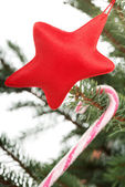 Sweet stick and a red star hanging on a tree. — Stock Photo