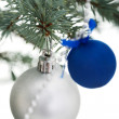 Stock Photo: Two christmas balls on a twig.