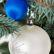 Two christmas balls on a twig. — Stock Photo #36545095