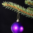 One christmas ball handing on a twig. — Stock Photo
