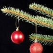 Stock Photo: Two christmas balls hanging on a tree.