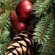 Christmas decorations- pine, balls on a tree. — Stockfoto