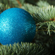 One christmas ball on a tree. — Stockfoto