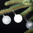 Stock Photo: Three christmas balls hanging on a twig.
