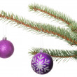 Two christmas balls hanging on a tree. — Stock Photo