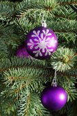 Christmas balls handing on a tree. — Stock Photo
