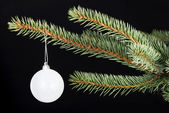 One christmas ball handing on a twig. — Stockfoto