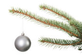 One separated christmas ball handing on a twig. — Foto de Stock