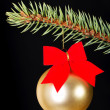 One gold christmas ball on a green fir. — Stock Photo